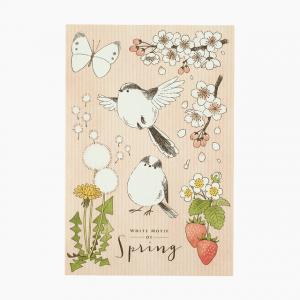 ポストカード(White Motif of Spring)