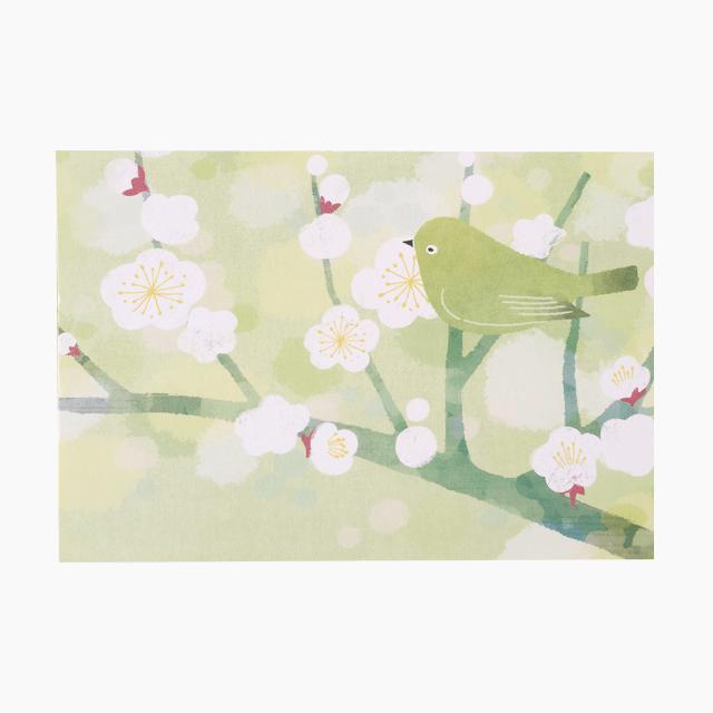 ポストカード(いのち芽咲く春)