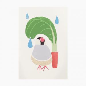 ポストカード(桜文鳥)