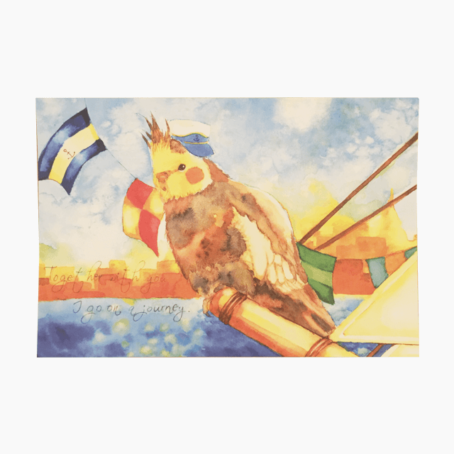 オカメインコ ポストカード