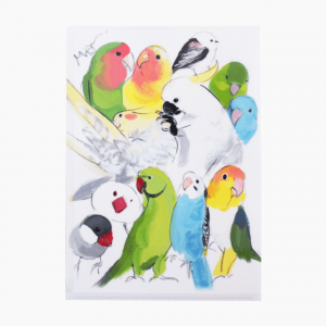 A4クリアファイル(インコとオウムと野鳥)