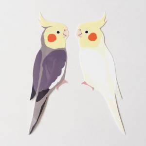 鳥デザインステッカー(オカメインコ)