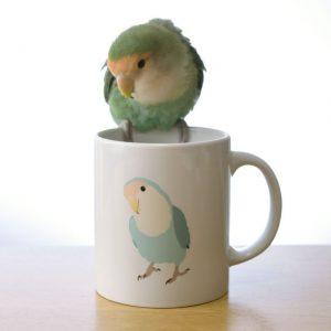 インコのおとちゃん×ことりちゃんマグカップ