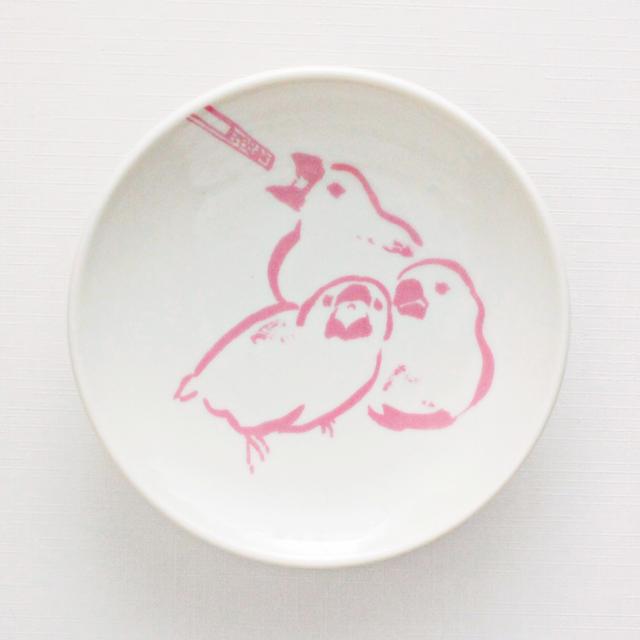 文鳥の成長を見守る豆皿(挿し餌)