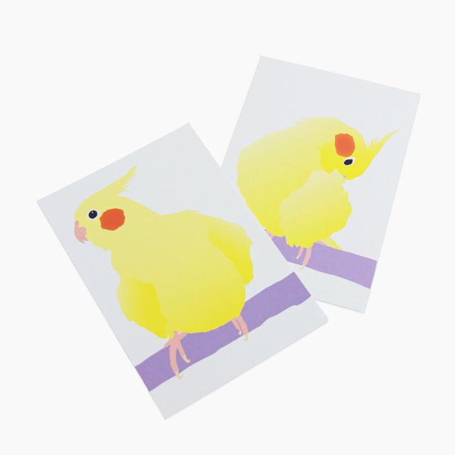 ことりちゃん ポストカード