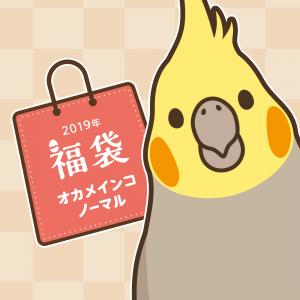 BIRDSTORY福袋 2019(オカメインコ ノーマル)