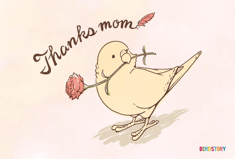 母の日 ポストカード BIRDSTORY