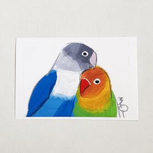 ポストカード(オクムラミチヨ / ボタンインコ)
