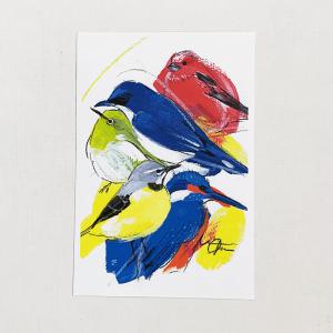 ポストカード(オクムラミチヨ / 野鳥)