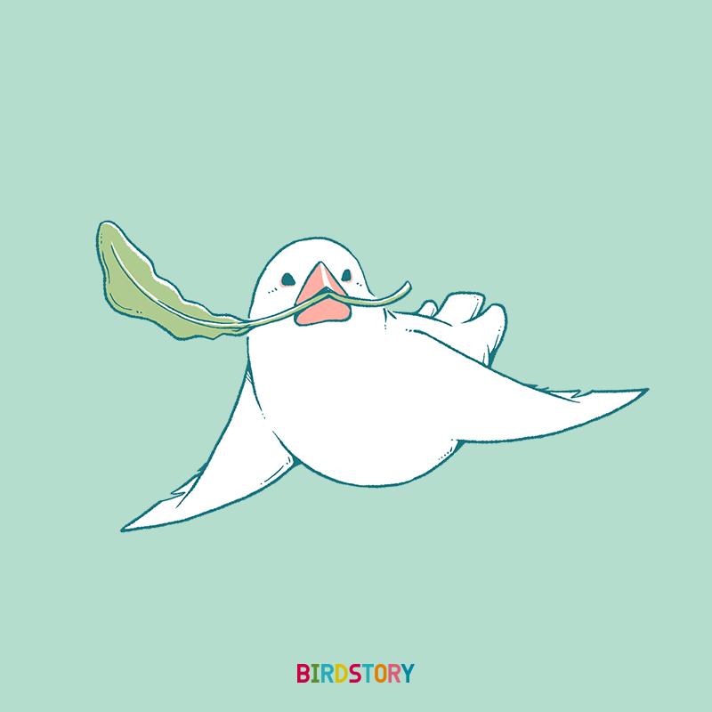 文鳥短歌コラボ企画 ポストカード