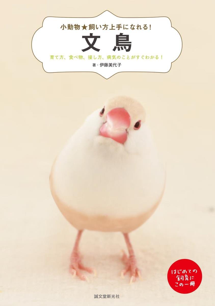 小動物★飼い方上手になれる!文鳥