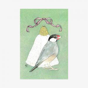 文鳥院まめぞう ポストカード(Quaret Bun Ⅱ)