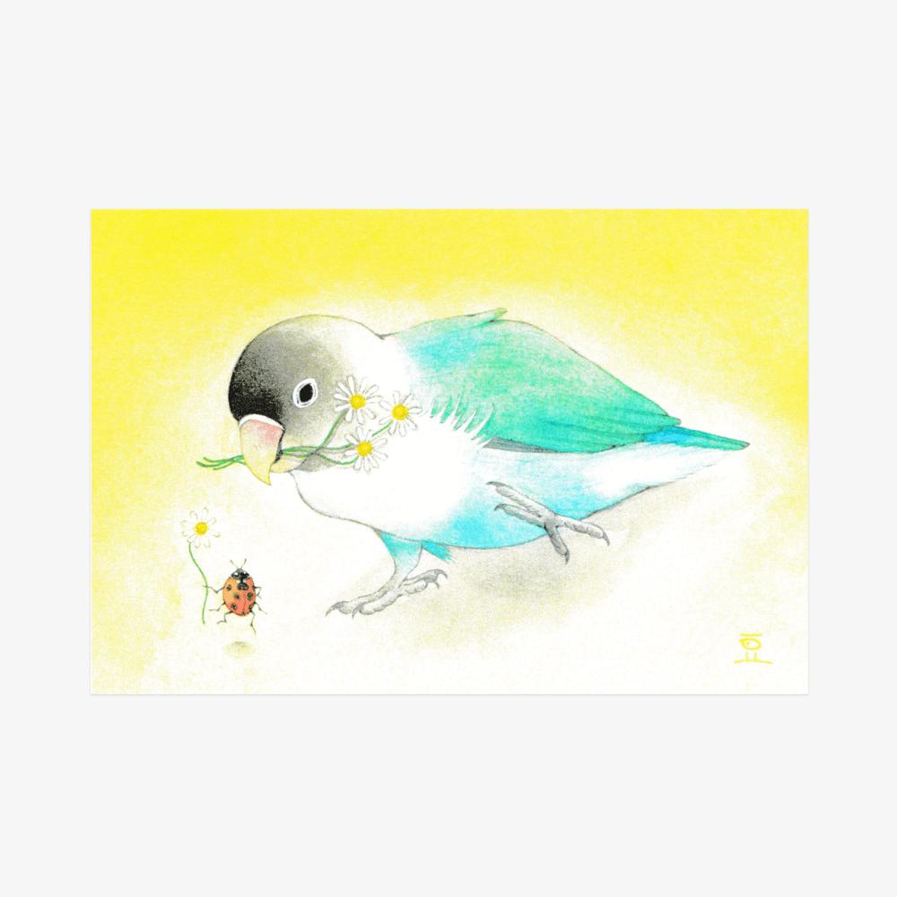 文鳥院まめぞう ポストカード(小さなきみの小さなジャンプ)