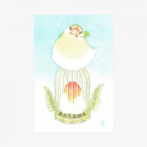 文鳥院まめぞう ポストカード(Quaret Bun Ⅳ)
