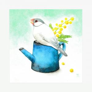 文鳥院まめぞう イラストカード(愛おしむ)