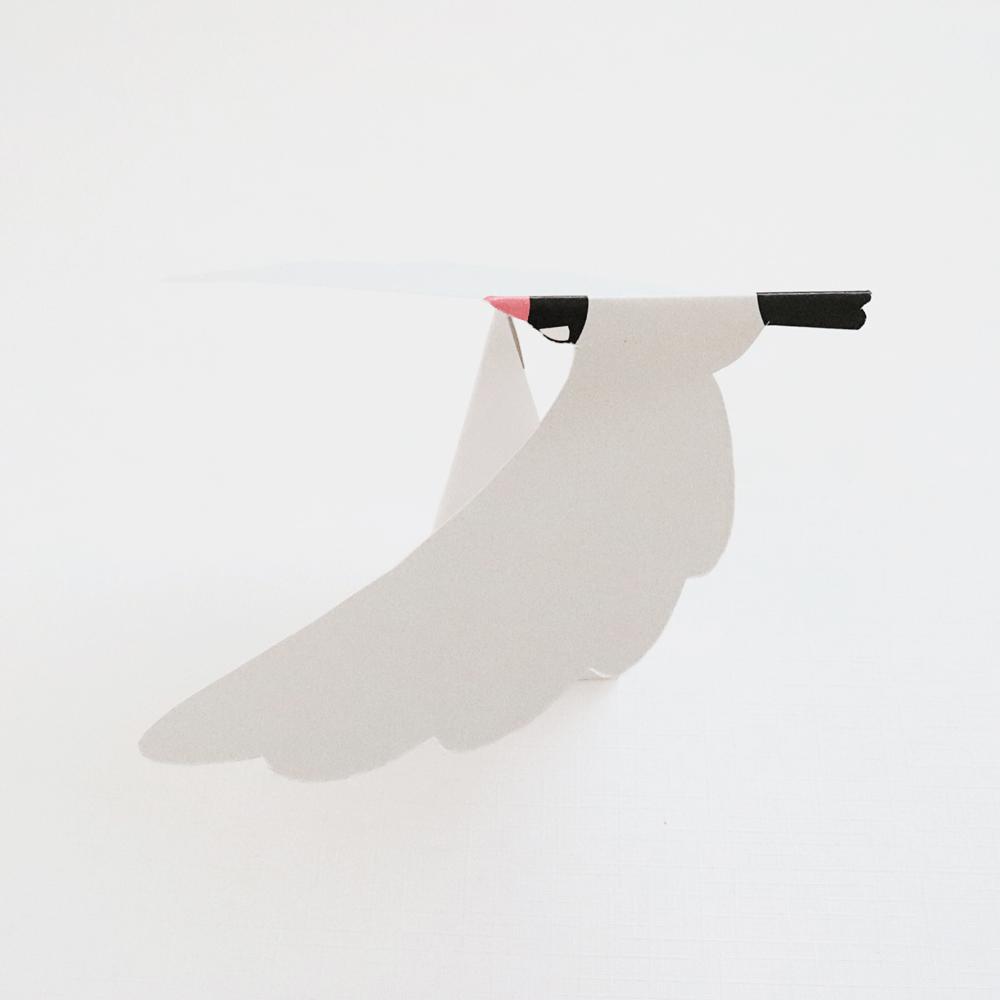 ヤジロバード(文鳥)