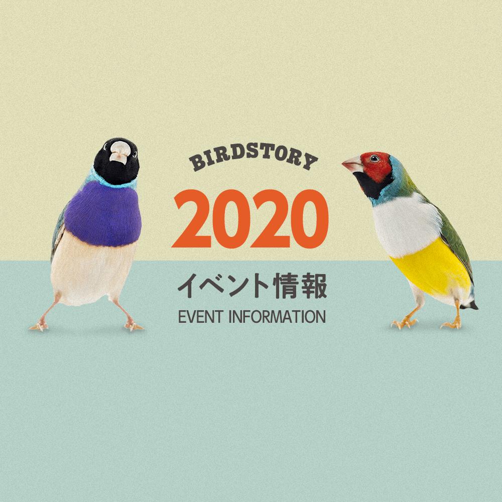 イベント情報 2020年 デザインフェスタや鳥フェスなど