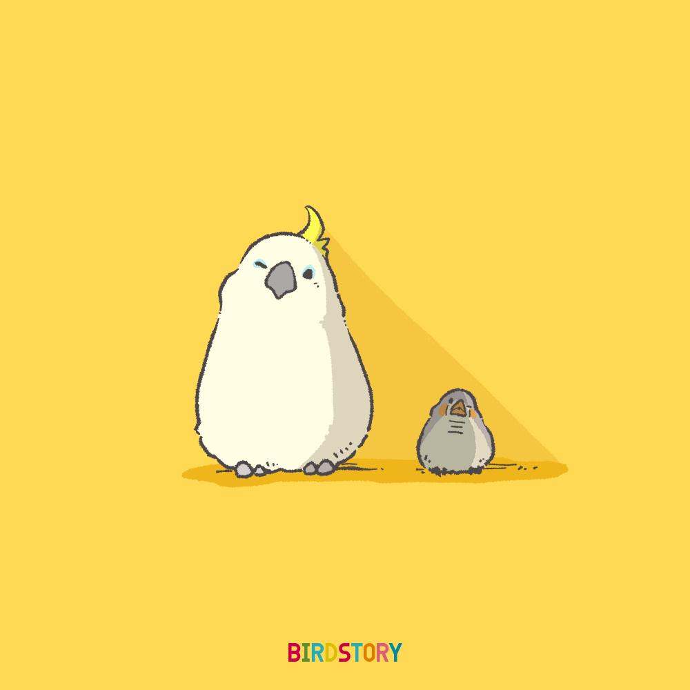 キバタン キンカチョウ 影 BIRDSTORY イラストレーション