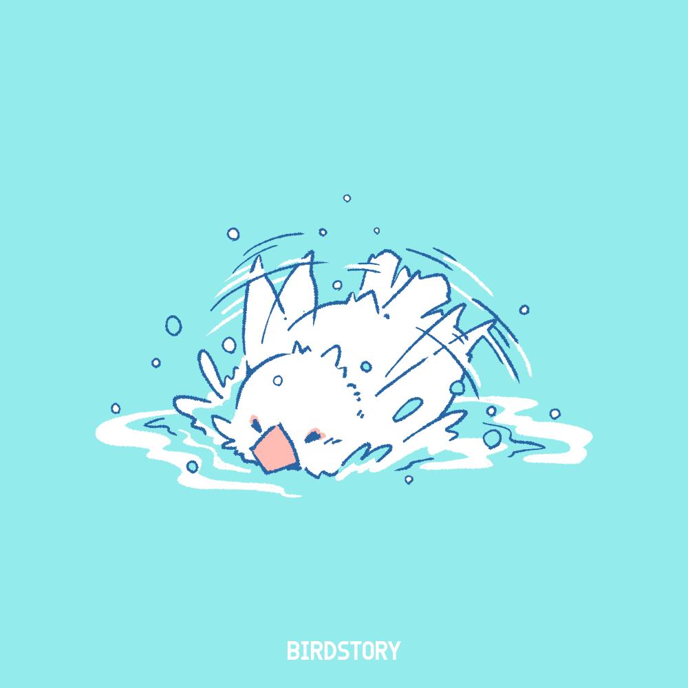 白文鳥 イラスト 水浴び バードストーリー 露天風呂の日