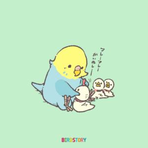 セキセイインコ イラスト BIRDSTORY てるてる坊主