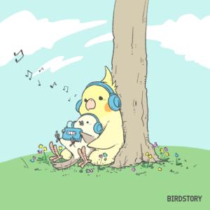 BIRDSTORY バードストーリー オカメインコ シマエナガ ウォークマン ヘッドフォン