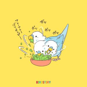 サラダ記念日 セキセイインコ 野菜 バードストーリー