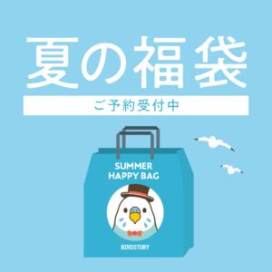 夏の福袋 BIRDSTORY バードストーリー セキセイインコ雑貨