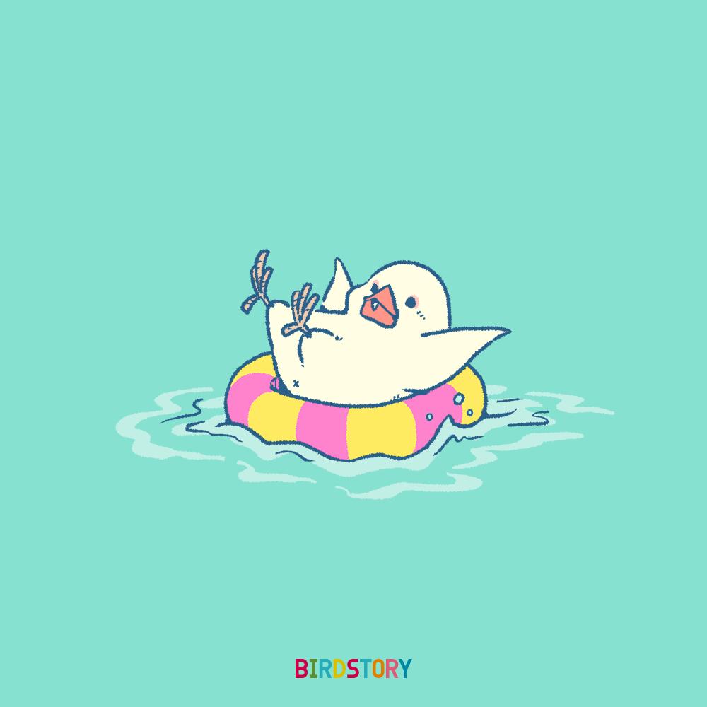 祝日海の日 浮き輪 うきわ文鳥 BIRDSTORY