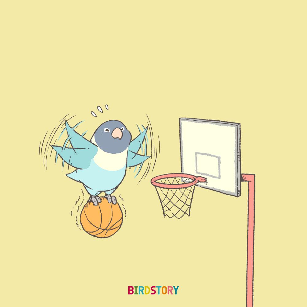 スポーツの日 バスケットボール ボタンインコ 祝日 体育の日
