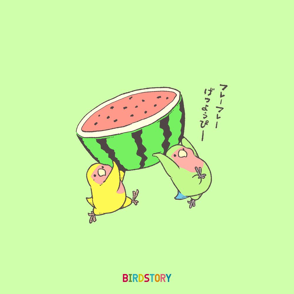 スイカ コザクラインコ 夏の果物 BIRDSTORY