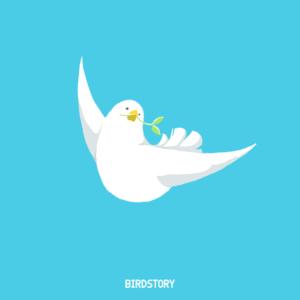 広島平和記念日 BIRDSTORY 平和を願って