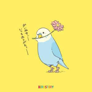 花の日 flower セキセイインコ budgerigar イラスト