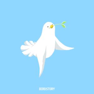 長崎原爆忌 白鳩 平和 祈る