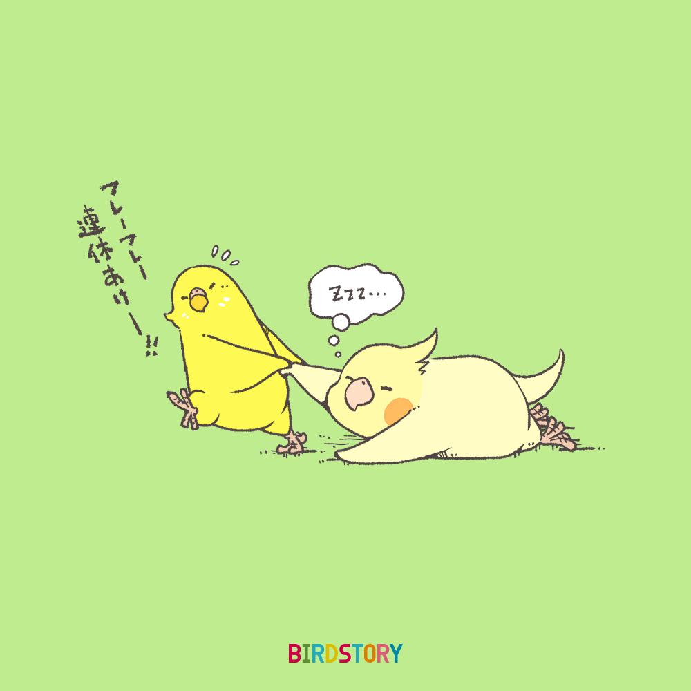 連休明け コンパニオンバードチアリーダーズ BIRDSTORY 月曜日の憂鬱