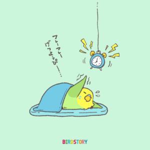 コンパニオンバードチアリーダーズ 月曜日 がんばる BIRDSTORY