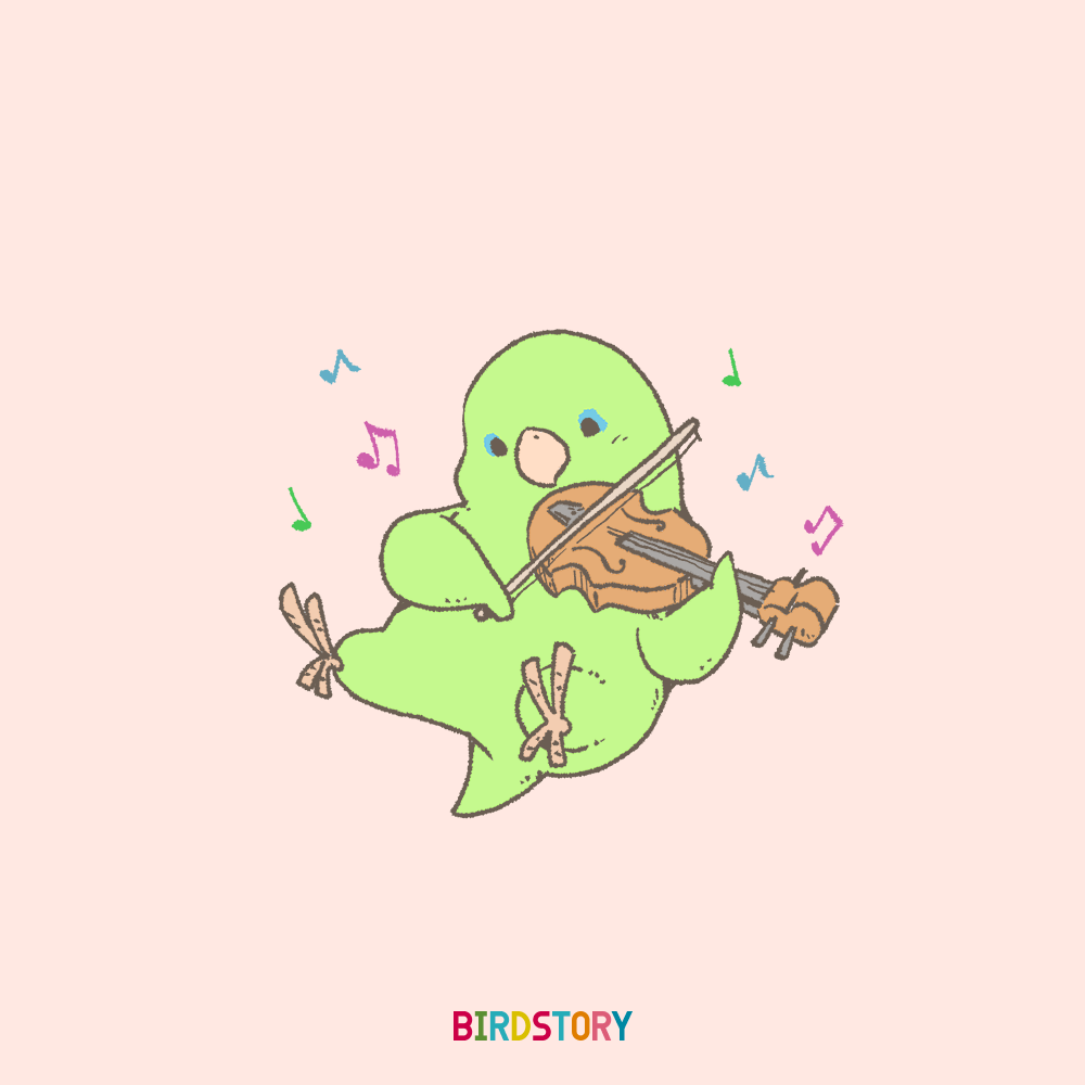 バイオリンの日 マメルリハ BIRDSTORY violin illust
