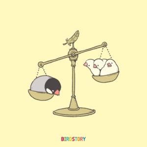 世界の法の日 文鳥 ジュウシマツ 天秤 イラスト 法律