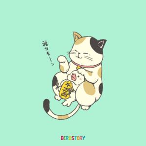 招き猫の日 服よ来い ネコ 文鳥 イラスト