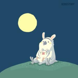 中秋の名月 お月見 満月 タイハクオウム うさぎコスプレ イラスト