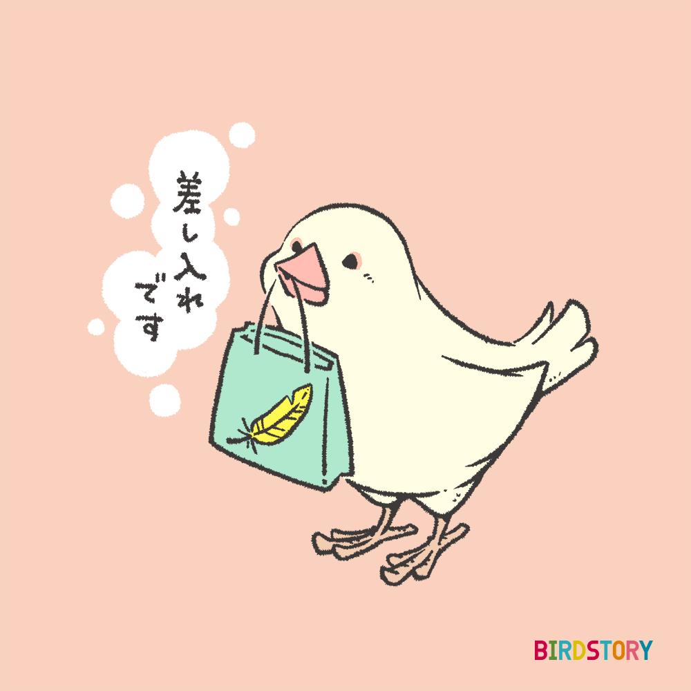 GIFTEE 白文鳥差し入れイラストギフトカード BIRDSTORY