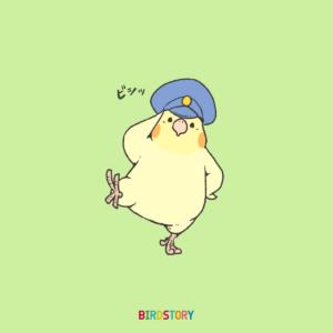 110番の日 おまわりさん敬礼オカメインコ BIRDSTORY