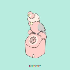 ピンクの公衆電話 モモイロインコとアキクサインコ