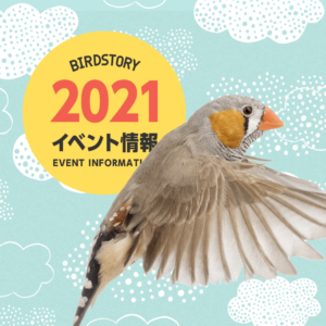 イベント情報 2021年 デザインフェスタや鳥フェスなど