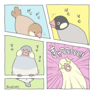 漫画の日 ブンチョウマンガ BIRDSTORY