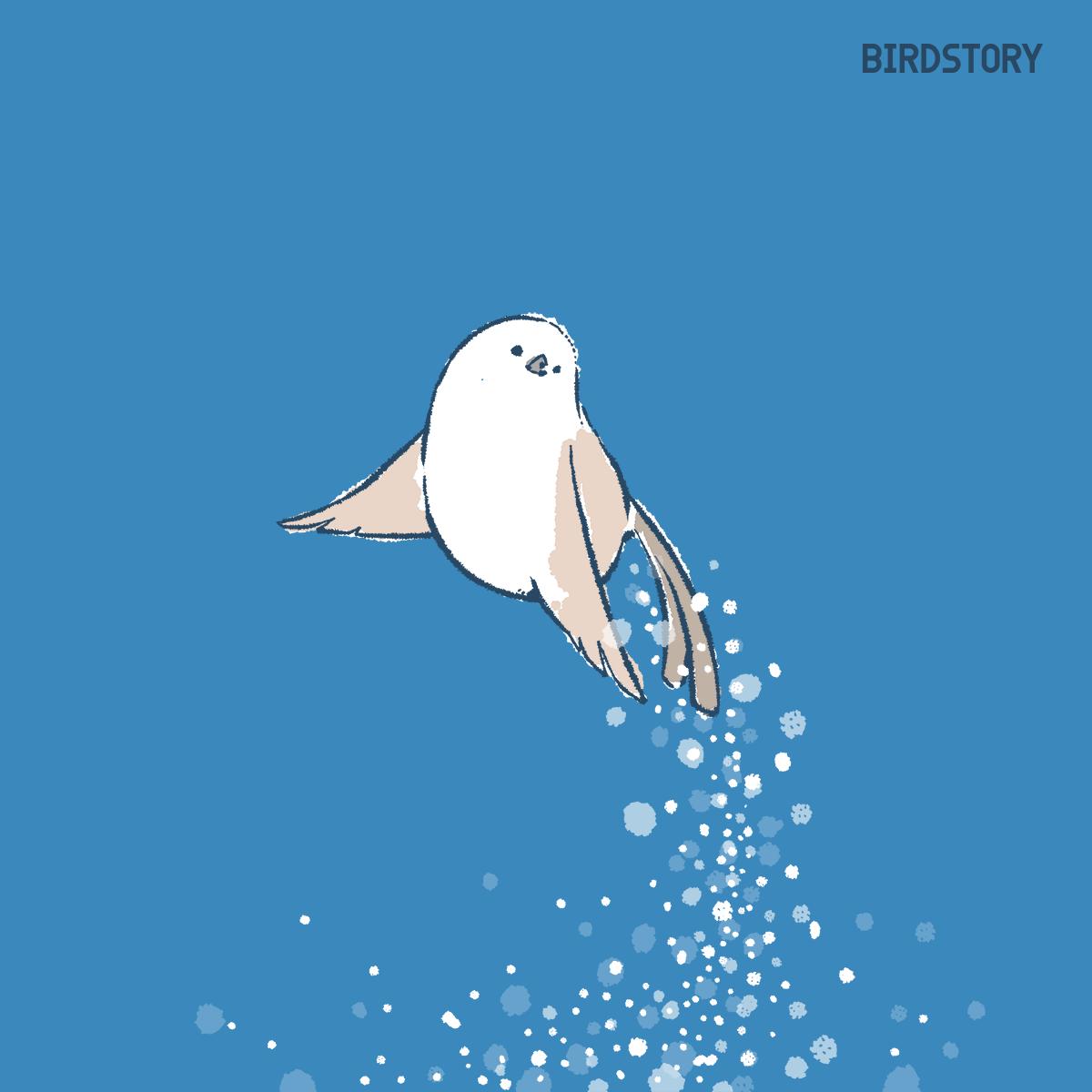 天使の囁きの日 ダイヤモンドダストとシマエナガのイラスト BIRDSTORY