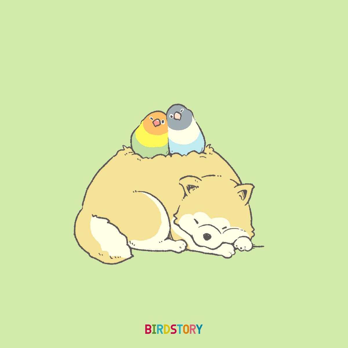 忠犬ハチ公の日 秋田犬 akitadog BIRDSTORY