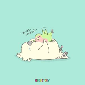 憂鬱な月曜日の応援団 BIRDSTORY