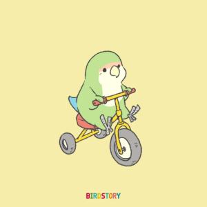 サイクリングの日 三輪車のコザクラインコイラスト
