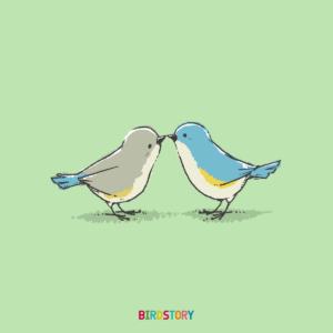 幸福の日 幸せの青い鳥 ルリビタキ