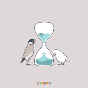 時の記念日 砂時計 ブンチョウ